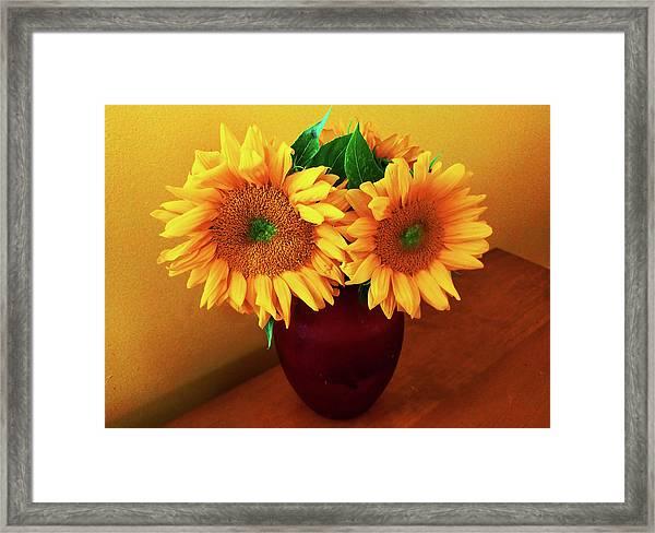 Sunflower Corner Framed Print