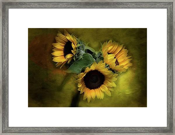 Sunflower Family Framed Print