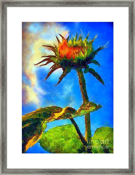 Sunflower - It's A Glorious Day She Said. Framed Print