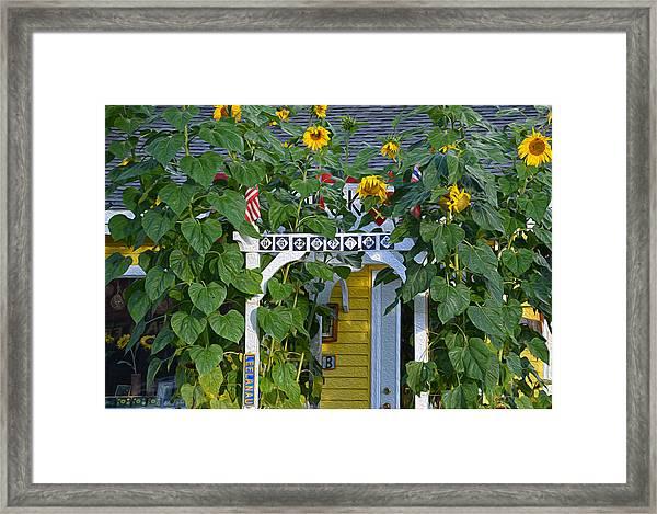 Sunflower Roads Framed Print