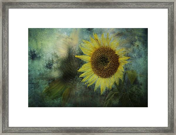 Sunflower Sea Framed Print