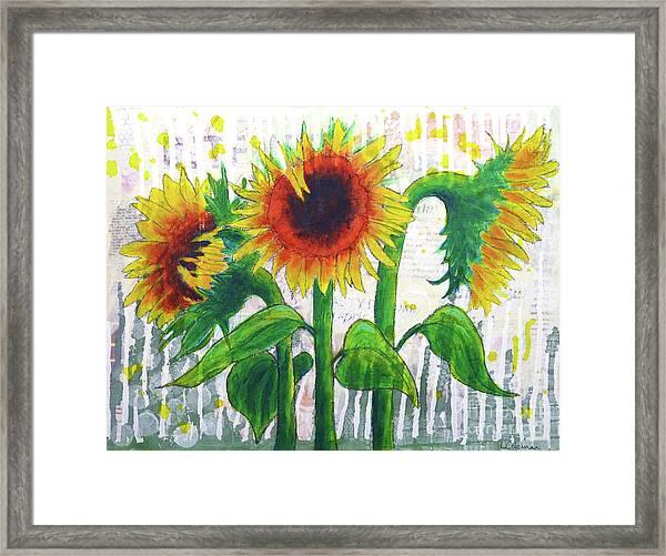Sunflower Sonata Framed Print