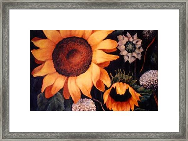 Sunflowers And More Sunflowers Framed Print