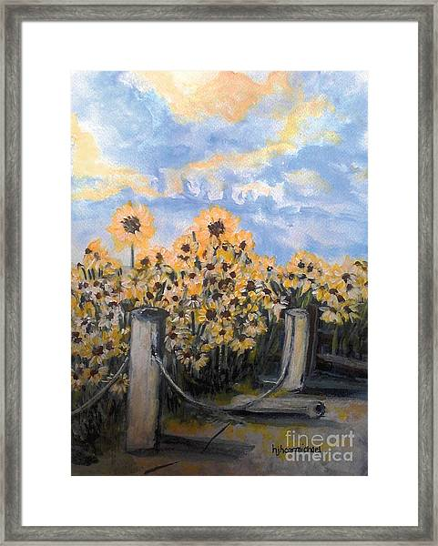 Sunflowers At Rest Stop Near Great Sand Dunes Framed Print