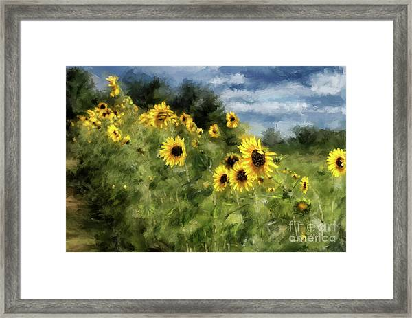 Framed Print featuring the photograph Sunflowers Bowing And Waving by Lois Bryan