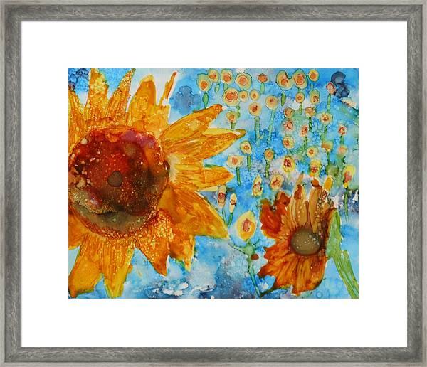 Sunflowers In Fields Framed Print