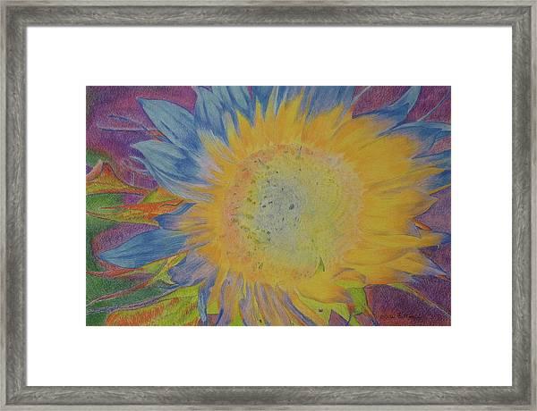 Sunglow Framed Print