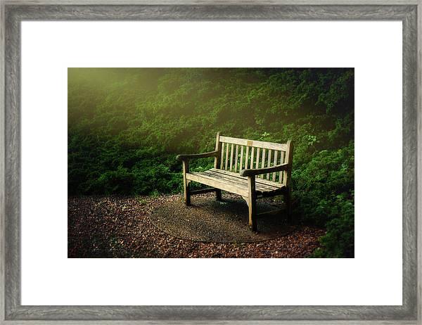 Sunlight On Park Bench Framed Print