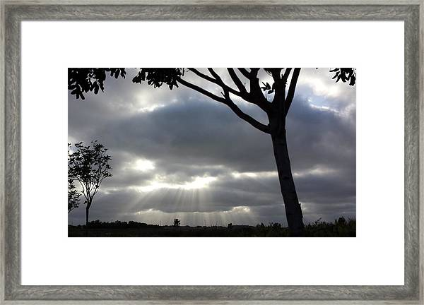 Sunlit Gray Clouds At Otay Ranch Framed Print