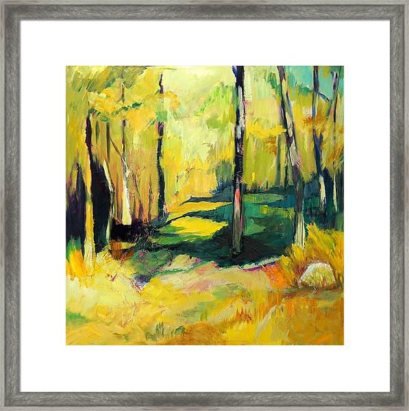 Sunny Meadow Framed Print