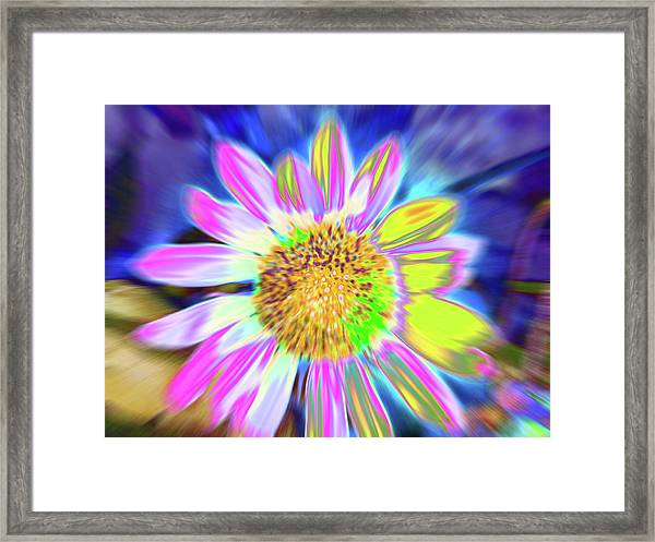 Framed Print featuring the photograph Sunrapt by Cris Fulton