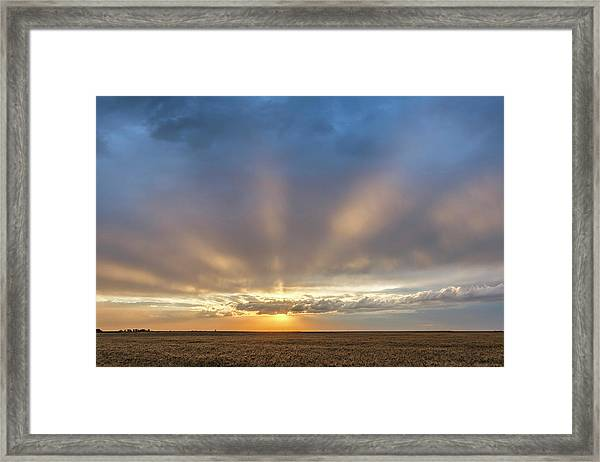 Sunrise And Wheat 03 Framed Print