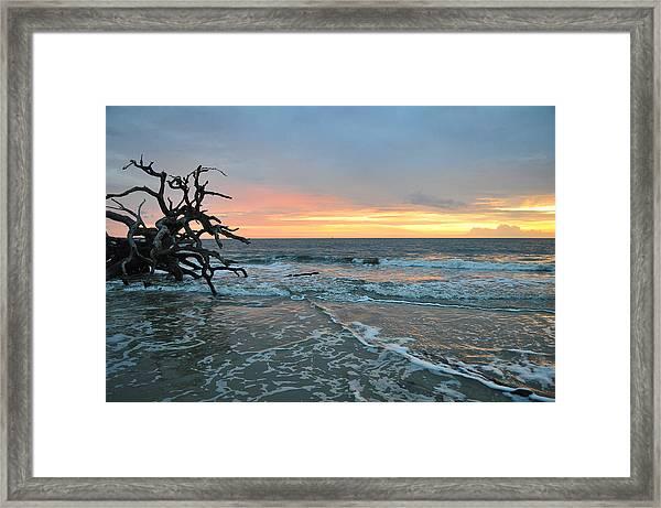 Sunrise At Driftwood Beach 1.3 Framed Print