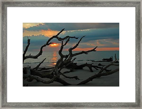 Sunrise At Driftwood Beach 2.2 Framed Print