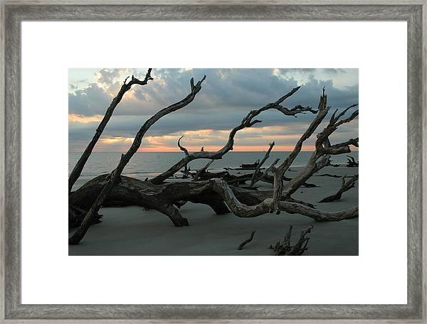 Sunrise At Driftwood Beach 4.1 Framed Print