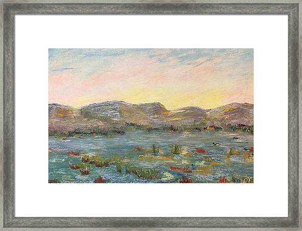 Sunrise At The Pond Framed Print