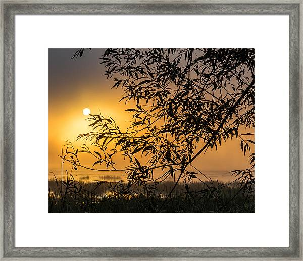 Sunrise Fog Framed Print
