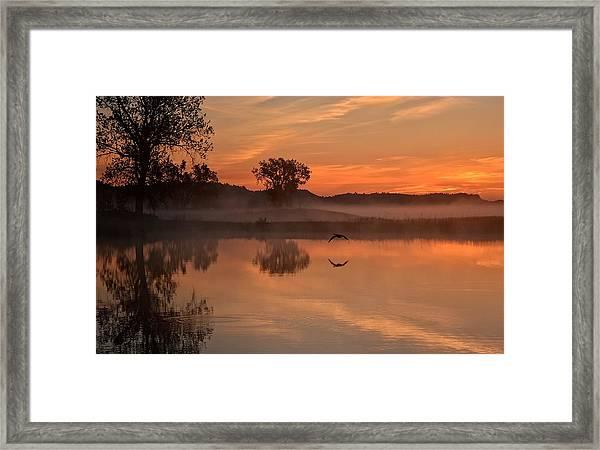 Sunrise Goose Framed Print