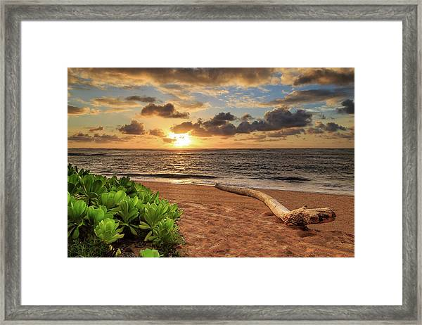Sunrise In Kapaa Framed Print