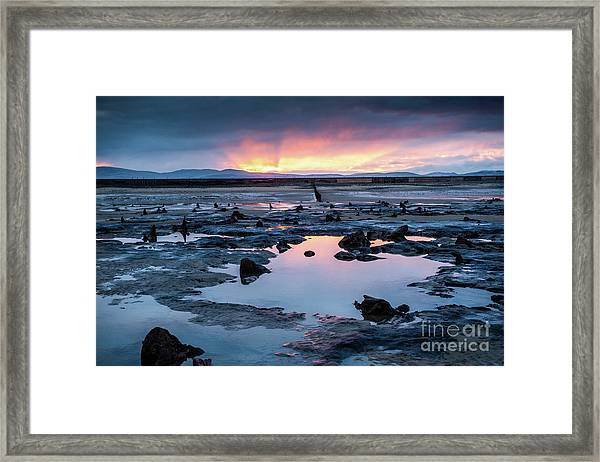 Sunrise Over The Bronze Age Sunken Forest At Borth On The West Wales Coast Uk Framed Print