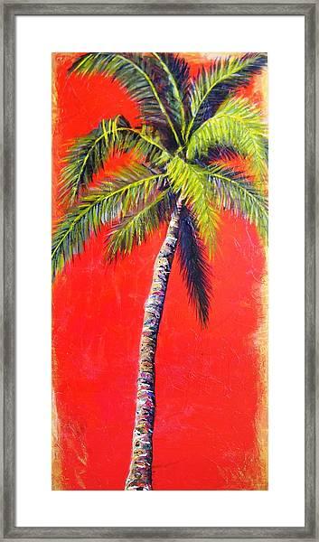 Sunrise Palm Framed Print