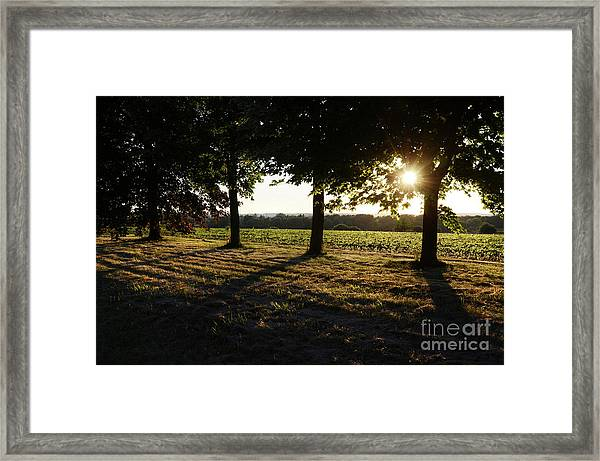 Sunset Along Elgin Mills Road-2 Framed Print
