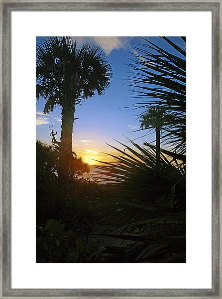 Sunset At Bearefoot Beach In Naples Framed Print