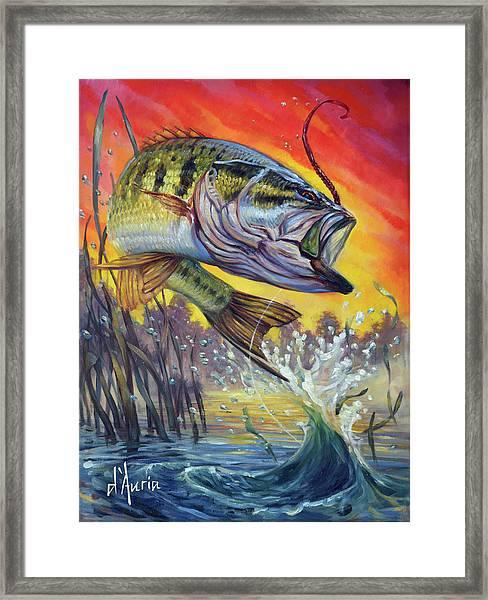 Sunset Bass Framed Print by Tom Dauria