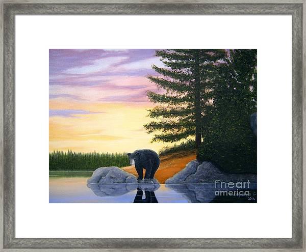Sunset Bear Framed Print