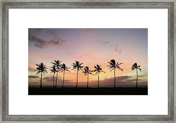 Sunset Behind The Palms Framed Print