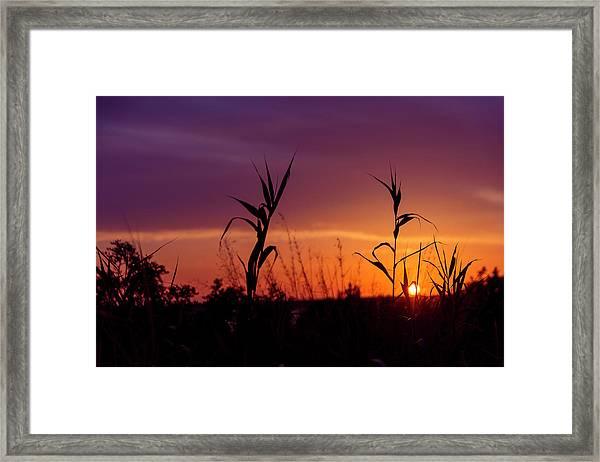 Framed Print featuring the photograph Sunset Colours by Nikos Stavrakas