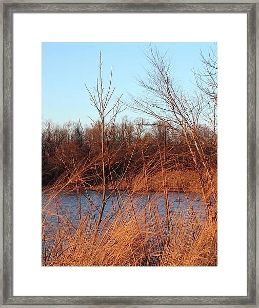 Sunset Field Over Water Framed Print