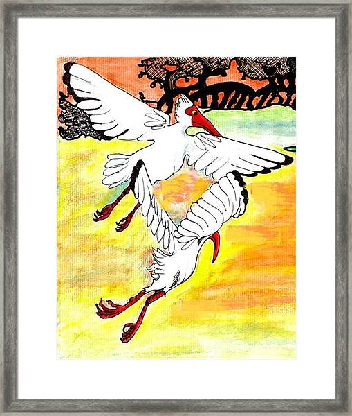 Sunset Flight Framed Print by Carol Allen Anfinsen