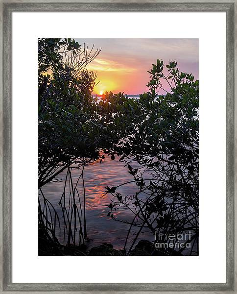 Sunset, Hutchinson Island, Florida  -29188-29191 Framed Print