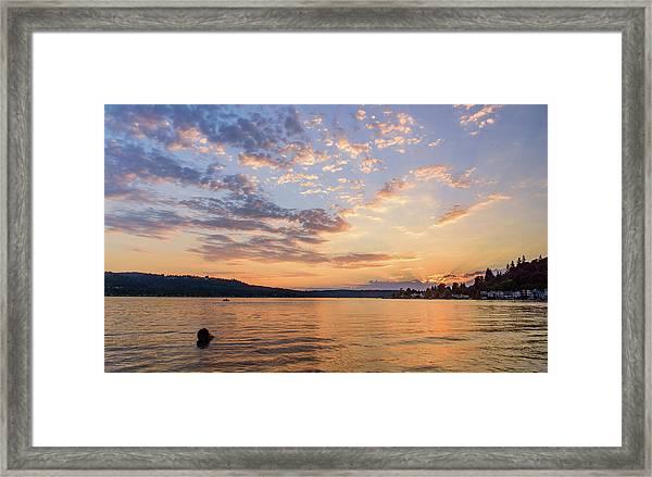 Sunset In Lake Sammamish Framed Print