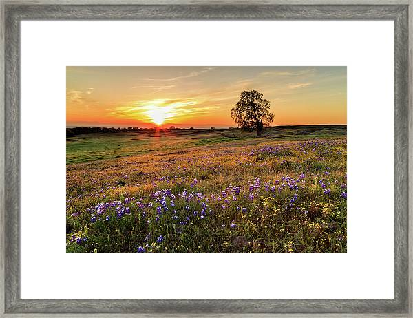 Sunset On North Table Mountain Framed Print