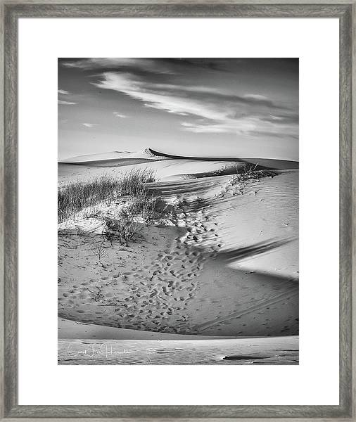 Sunset On The Dunes Framed Print