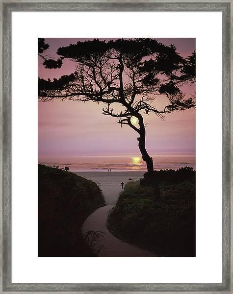 Sunset On The Zen Path Framed Print
