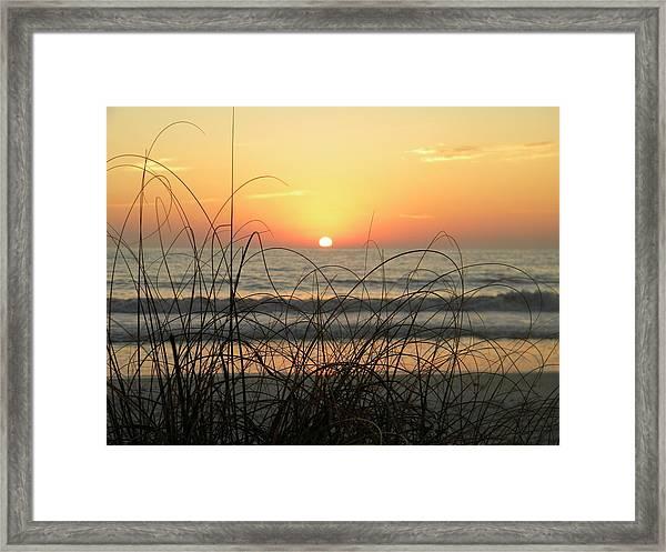 Sunset Sea Grass Framed Print