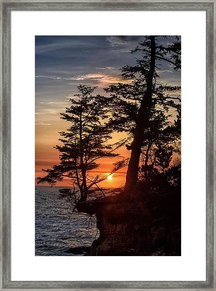 Sunset Through The Trees Framed Print