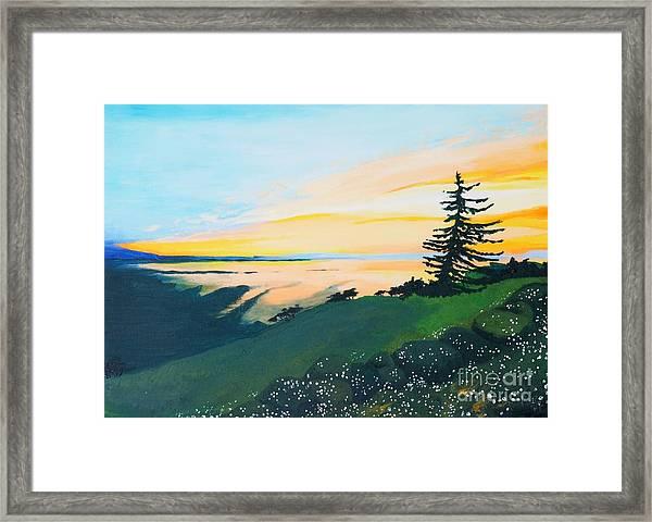 Sunset Framed Print by Tiina Rauk