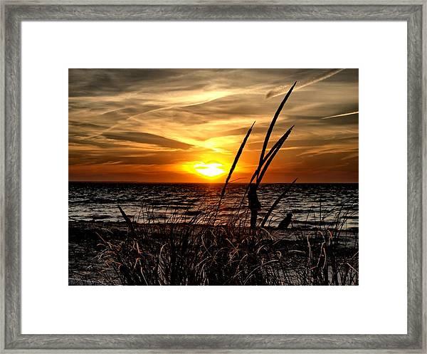Sunset Walk Framed Print