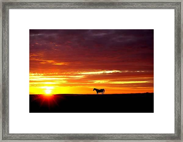 Sunset Watcher Framed Print