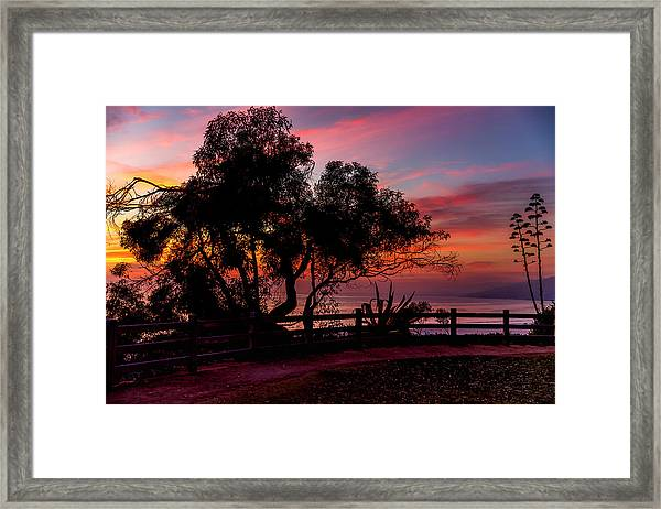 Sunset Silhouettes From Palisades Park Framed Print