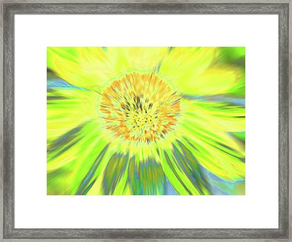 Sunshake Framed Print