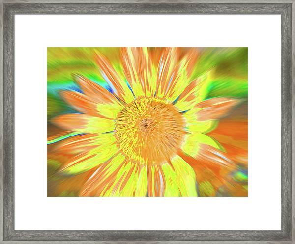 Sunsoaring Framed Print