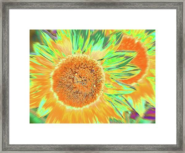 Suntango Framed Print
