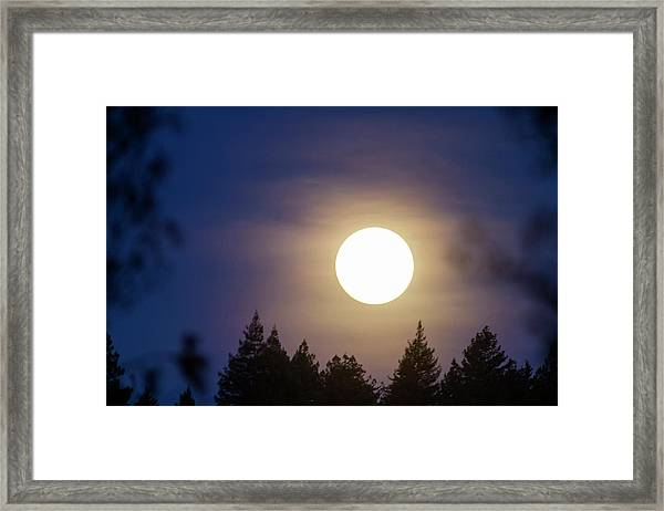 Super Full Moon Framed Print