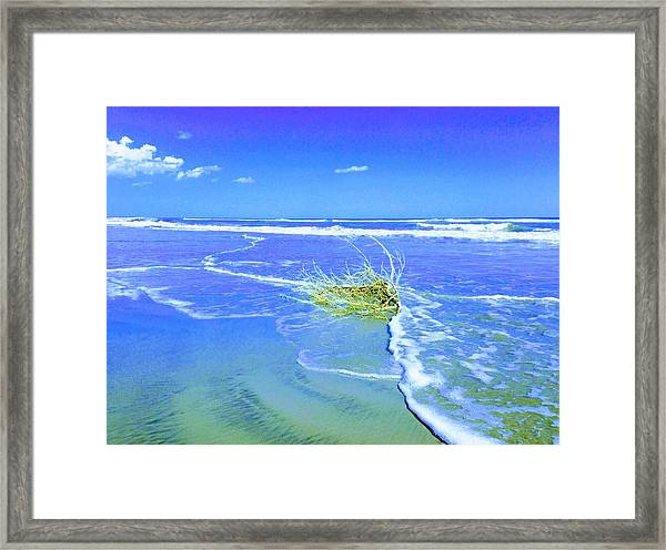 Surf Snuggle Framed Print