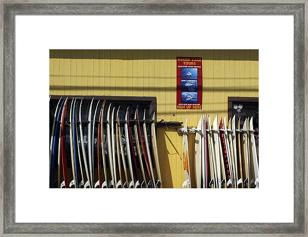 Surfboard Selection Framed Print